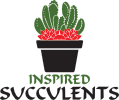 Small logo for inspired succulents